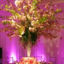130x130_sq_1405699771811-tree-centerpiece-wedding