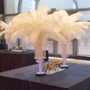 White Ostrich Feather Centerpieces with a Crystal drop and slightly pink gel decor (choice of colors) and an LED uplight....call for pricing