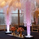 Ostrich feather centerpieces with a Crystal drop and gel decor (choice of color) with an LED uplight....cheaper to rent than tall floral arrangements! Call for pricing