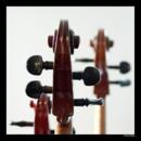 130x130 sq 1366381594437 celloheads