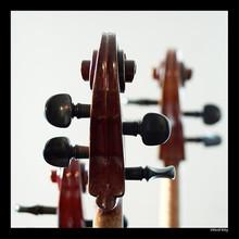 220x220 1366381594437 celloheads