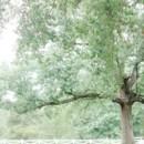 130x130 sq 1476672281184 tree