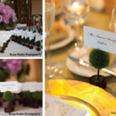 130x130 sq 1421273111883 topiary placecards