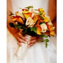 130x130 sq 1269263598694 wedding1