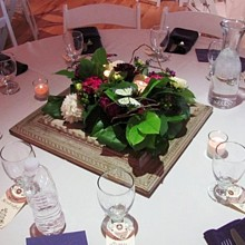 220x220 sq 1319214406226 weddingcenterpiece