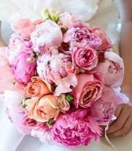 220x220_1406161033455-wedding