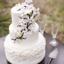 130x130 sq 1376048738197 theresanesmithphotographythe cake zonewedding cake1