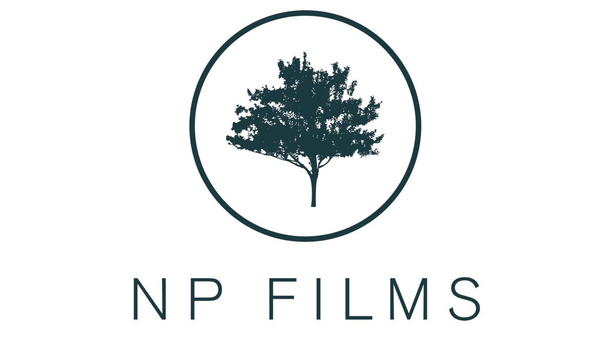 NP FILMS - Videography - Layton, UT - WeddingWire
