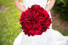 220x220 1447437849 57dfde9705d72a2d bouquet d orfs photography