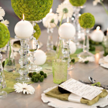 220x220 sq 1460247297944 modern green and white wedding inspiration013