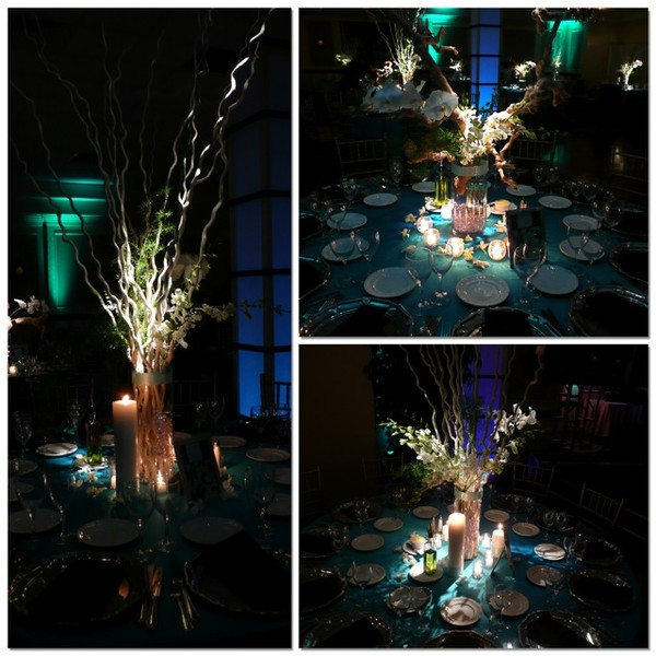 600x600 1404150014423 eggsotic events hollywood decor 4