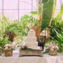 130x130 sq 1447185815297 cake in greenhouse