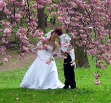 220x220 1245792201500 wedding