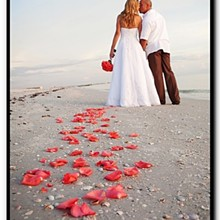 220x220 sq 1328029391560 beachweddingphotographytampabay1