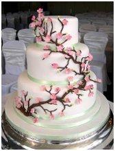 220x220 1246222028126 cherrytreeweddingcake