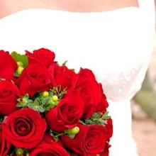 220x220 sq 1248026703432 weddingsnap