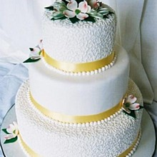 220x220 sq 1247076101906 weddingcake1