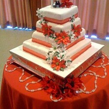 220x220 sq 1249580676192 weddingcake