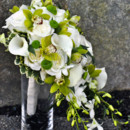 130x130 sq 1452898893080 cascading white  green bouquet
