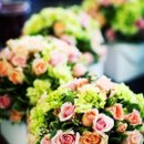 130x130 sq 1235241917537 flowers2