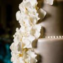 130x130 sq 1454448500901 amanda hein photography   ruffled petals detail
