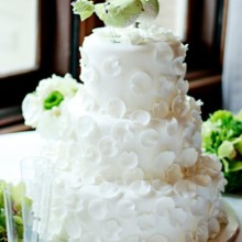 vegan wedding cakes dallas tx frosted bakery wedding cake dallas tx weddingwire 21563