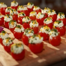 220x220 sq 1446754332916 stuffed tomato   aprylanngrandopening127