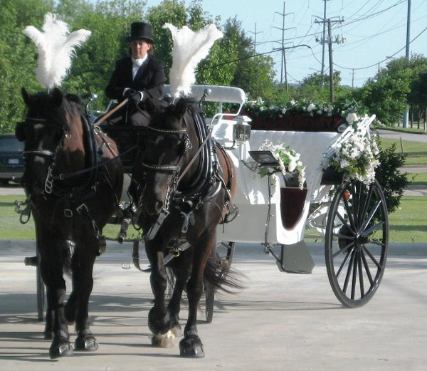 photo 1 of Threejays Carriages