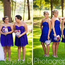 220x220 sq 1347383238920 crystalspringsweddingphotography6