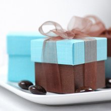 Beautiful square favor boxes to fill with traditional Jordan almonds, colorful candies or small trinkets.