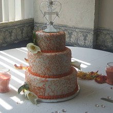 220x220 sq 1257699283488 coraldreamweddingcake