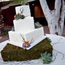 130x130 sq 1367645632639 succulent wedding cake