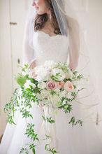 220x220 1484162371 851e23fe9a2dbe1a jason and jenn wedding favorites 0050