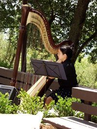 photo 2 of Graceful Music: Harpist & Pianist