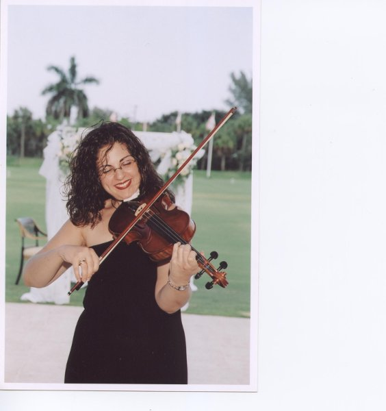 photo 1 of Violin Serenade