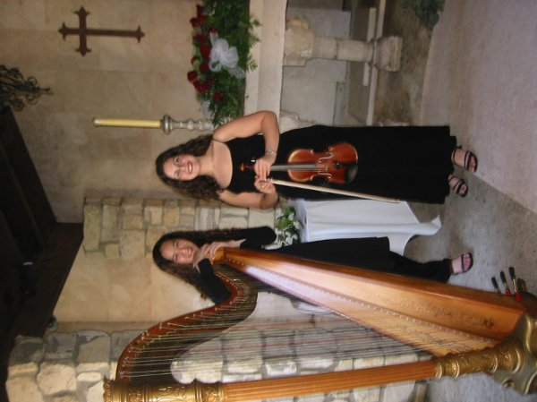 photo 3 of Violin Serenade