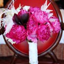 Bridal Bouquet of Hot pink Roses, peonies, Wine Callas, and white feathers