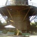 130x130 sq 1302387264201 queenwilhelminatulipgardenandwindmillingoldengatepark