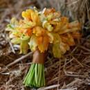 130x130 sq 1366733032624 10 yellow tulip bouquet