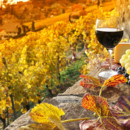 130x130 sq 1475695013357 winetastingexperienceonhillside1260x630shutterstoc