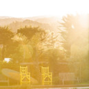 130x130 sq 1487461690898 yellow chairs  carol olivia 2017 thf0355img2063byc
