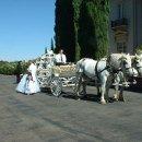 130x130 sq 1347907959701 carriage4