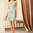 130x130_sq_1406824736878-afforable-bridesmaid-dress-alfred-angelo-style7269