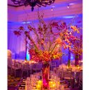 130x130 sq 1325899572234 platinumweddingsdetails2