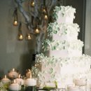 130x130 sq 1217661985864 cakewithtreebackground