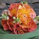 130x130_sq_1357676823830-orangebridesmaidjune