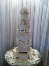 220x220 1379966847623 ocala cake 3