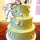 130x130_sq_1351530527226-cherryblossomcake