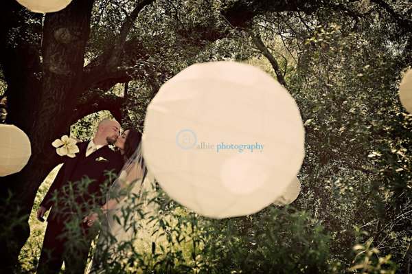 photo 71 of Albie Photography