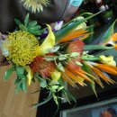 130x130 sq 1300998495818 flowershop114
